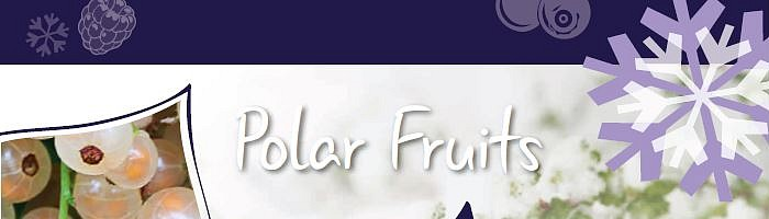 AVS Polar Fruits